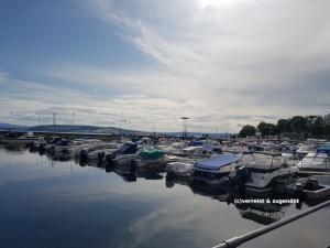 Hafen Hamar